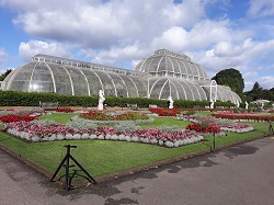 Royal Botanic Gardens, Kew: Palm House